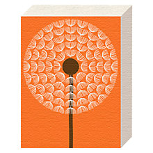 Buy Simon C Page - Dandelion Canvas Print, 20 x 15cm Online at johnlewis.com