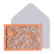 Buy Portico Laser Cut Birds Notecards, Pack of 10 Online at johnlewis.com
