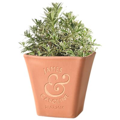 Letterfest Engraved Initial Terracotta Pot