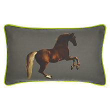 Buy Andrew Martin National Gallery Stubbs' Whistlejacket Cushion Online at johnlewis.com