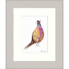 Buy Mimi Emmet - Pheasant Framed Print, 31 x 37cm Online at johnlewis.com