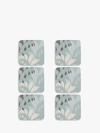 John Lewis & Partners Garden Coaster, Set of 6