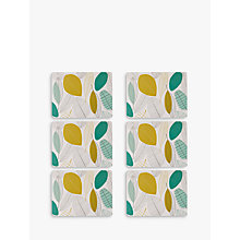 Buy John Lewis Leaves Placemat, Set of 6 Online at johnlewis.com