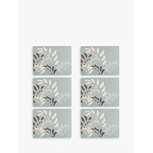 Buy John Lewis Garden Placemat, Set of 6 Online at johnlewis.com