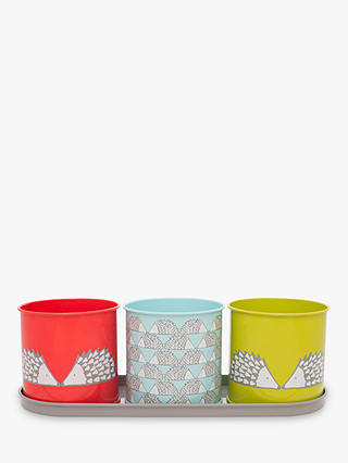 Buy Scion Spike Herb And Plant Pot Online at johnlewis.com