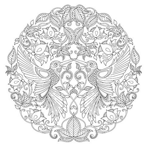 Buy Johanna Basford Secret Garden Hummingbird Colouring Canvas