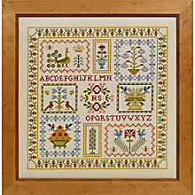 Buy Historical Sampler Acorn Cross Stitch Kit Online at johnlewis.com