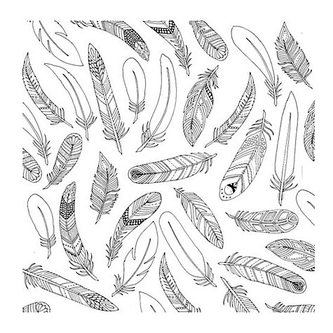 Buy Johanna Basford Enchanted Forest Feathers Colouring Canvas Online At Johnlewis