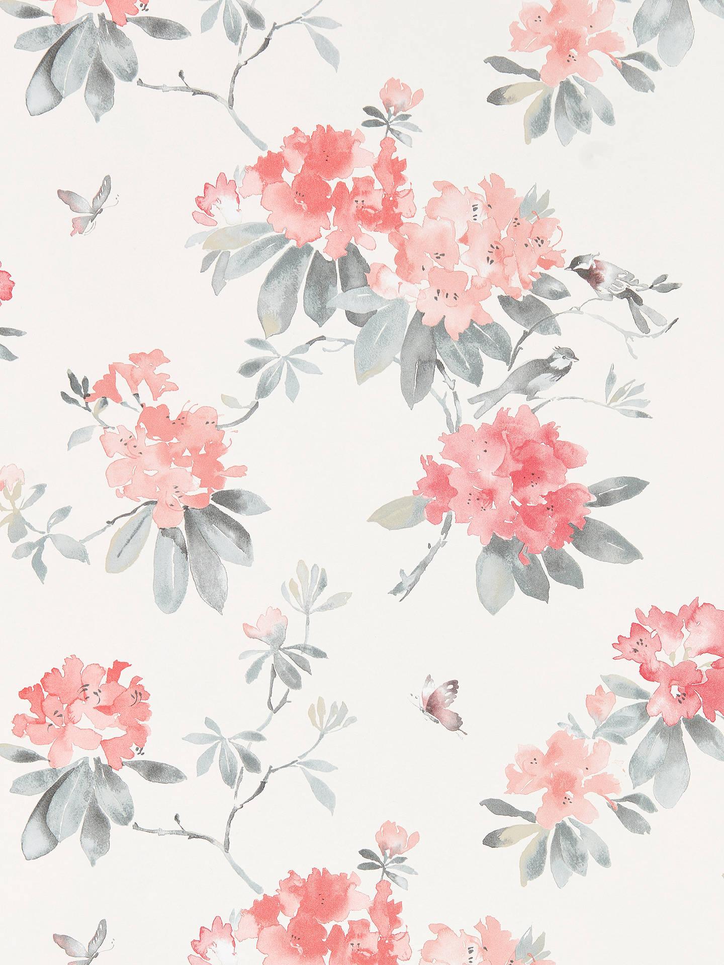 BuySanderson Waterperry Rhodera Wallpaper, Coral 216264 Online at johnlewis.com