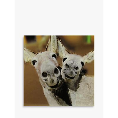 Image of Woodmansterne Two Smiley Donkeys Greeting Card