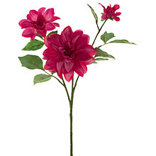 Buy Floralsilk Dahlia Spray, Pink Online at johnlewis.com