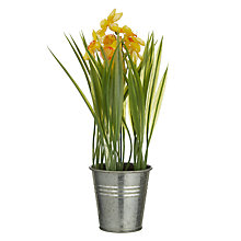 Buy John Lewis Artificial Daffodils In Tin Online at johnlewis.com