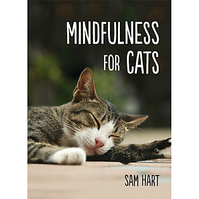 Mindfulness For Cats Book