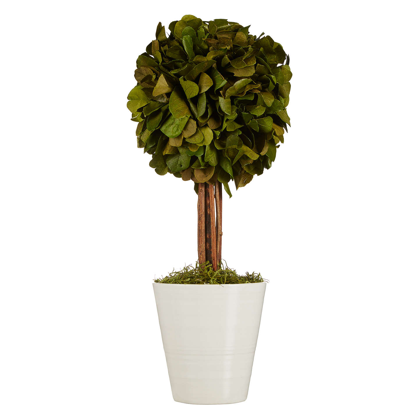 Buyjohn Lewis Artificial Topiary Tree Online At Johnlewiscom