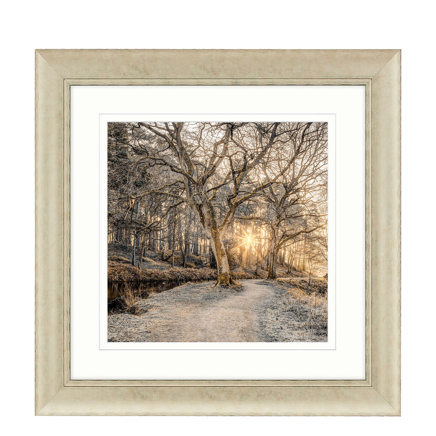 BuyAssaf Frank - Autumn Walk I Framed Print, 70 x 70cm Online at johnlewis.com