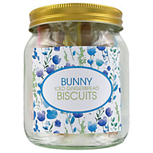 Buy Image on Food Easter Bunny Iced Gingerbread Biscuits & Jar, 50g Online at johnlewis.com