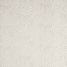 Buy John Lewis Maidenhair Ferns Furnishing Fabric Online at johnlewis.com