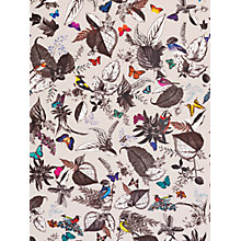 Buy Osborne & Little Bird Song Wallpaper, W6596-01 Online at johnlewis.com