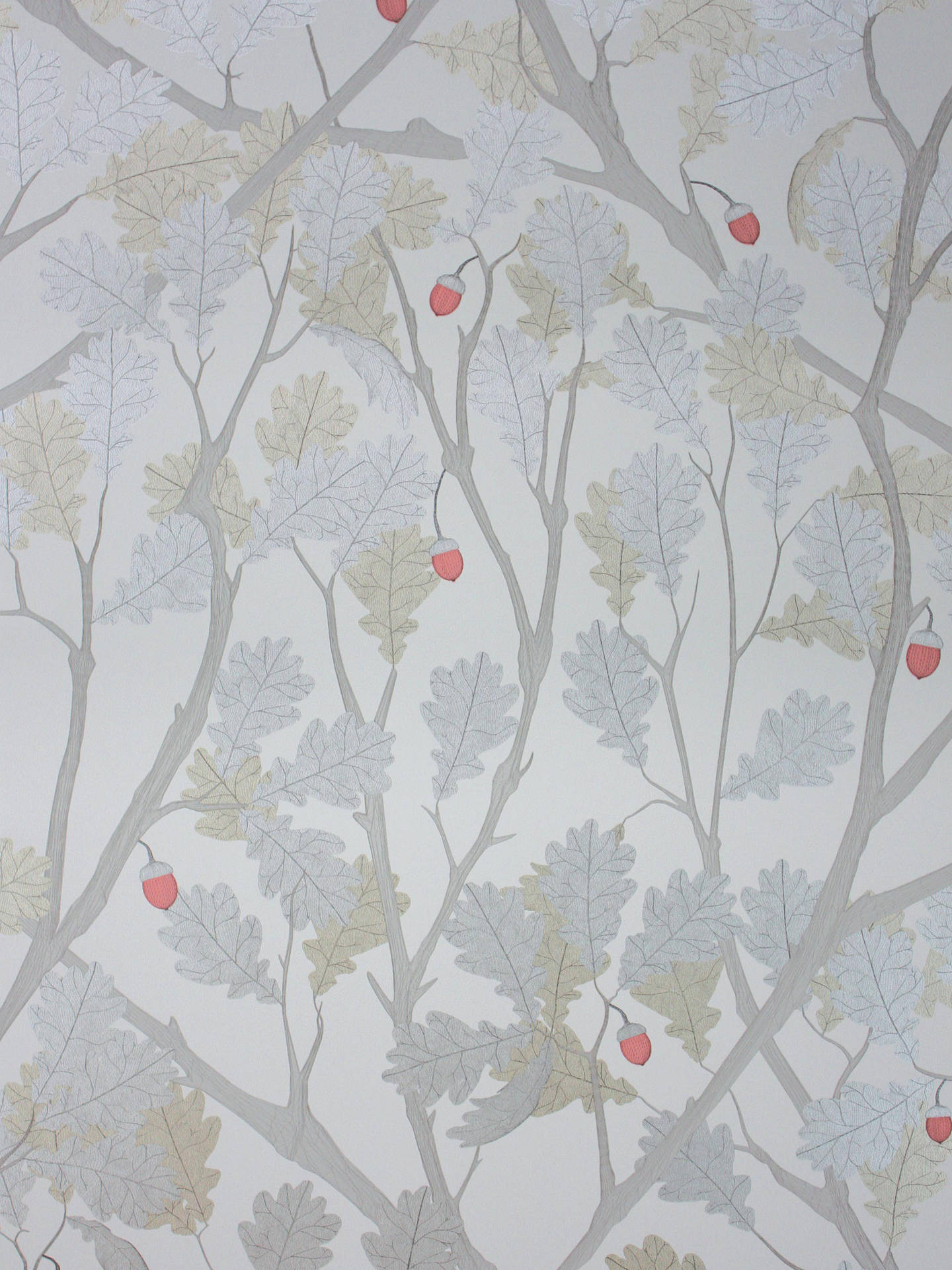 BuyOsborne & Little Feuille De Chêne Wallpaper, W6430-01 Online at johnlewis.com
