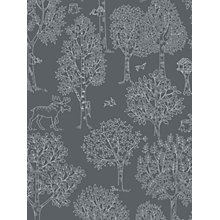 Buy Galerie Jack n Rose Junior Forest Wallpaper Online at johnlewis.com