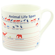 Buy McLaggan Smith Educational 'Animal Lifespan' Mug Online at johnlewis.com