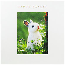 Buy Susan O'Hanlon Rabbit In Grass Easter Greeting Card Online at johnlewis.com