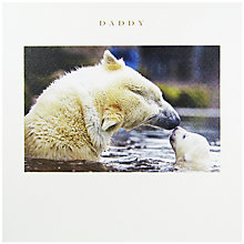 Buy Susan O'Hanlon Daddy Polar Bear Father's Day Card Online at johnlewis.com