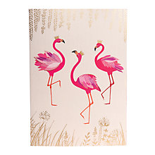 Buy Sara Miller A5 Flamingo Notebook, Cream Online at johnlewis.com