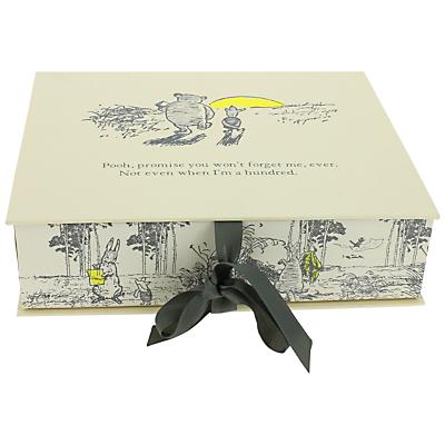 Winnie The Pooh Photo Box