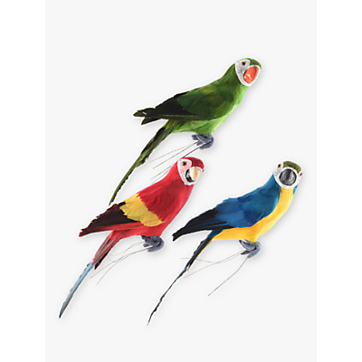 John Lewis Assorted Parrot, Multi