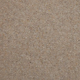 Carpet & Hard Flooring