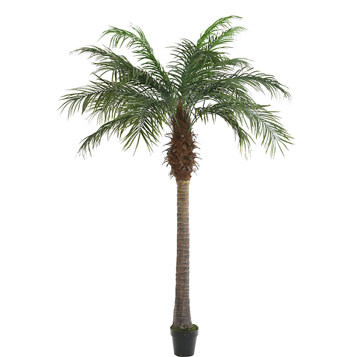 Buy John Lewis Decorative Palm Tree Online at johnlewis.com
