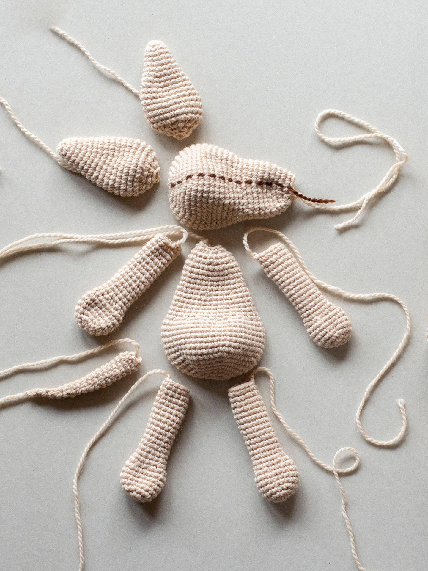 Amigurumi Labrador Puppy | 1920x1440