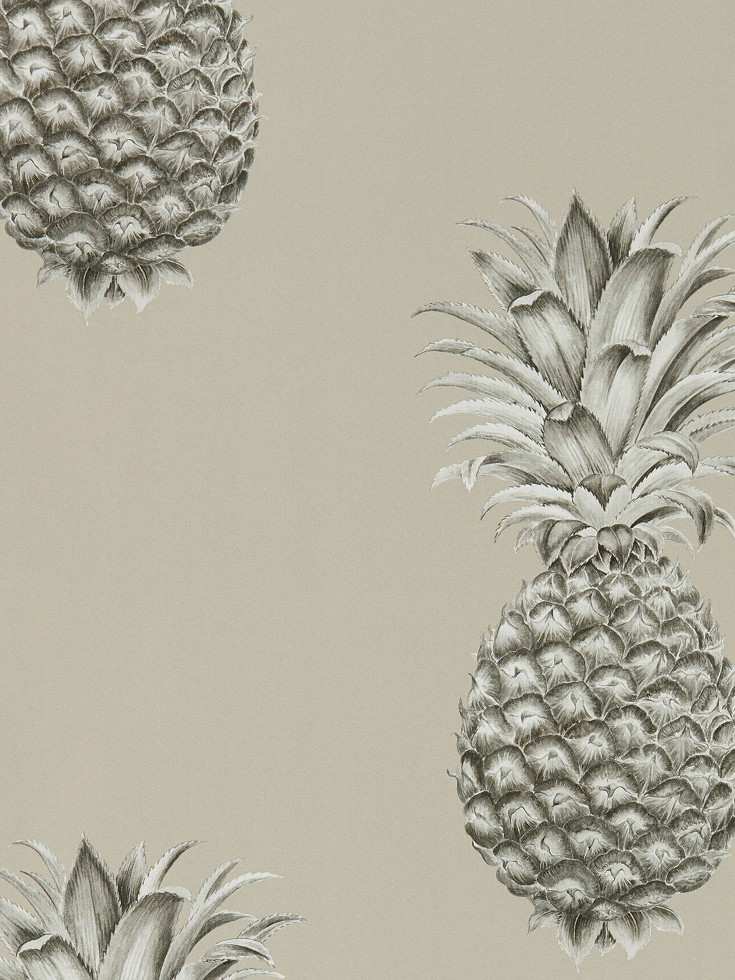 BuySanderson Pineapple Royale Wallpaper, DART216323 Online at johnlewis.com