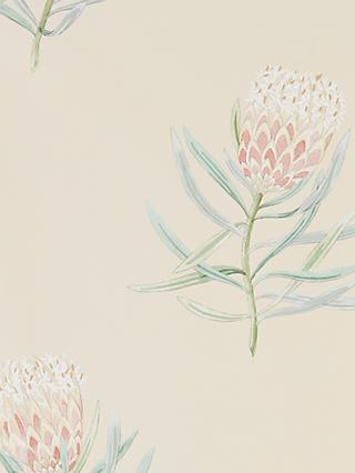 Sanderson Protea Flower Wallpaper