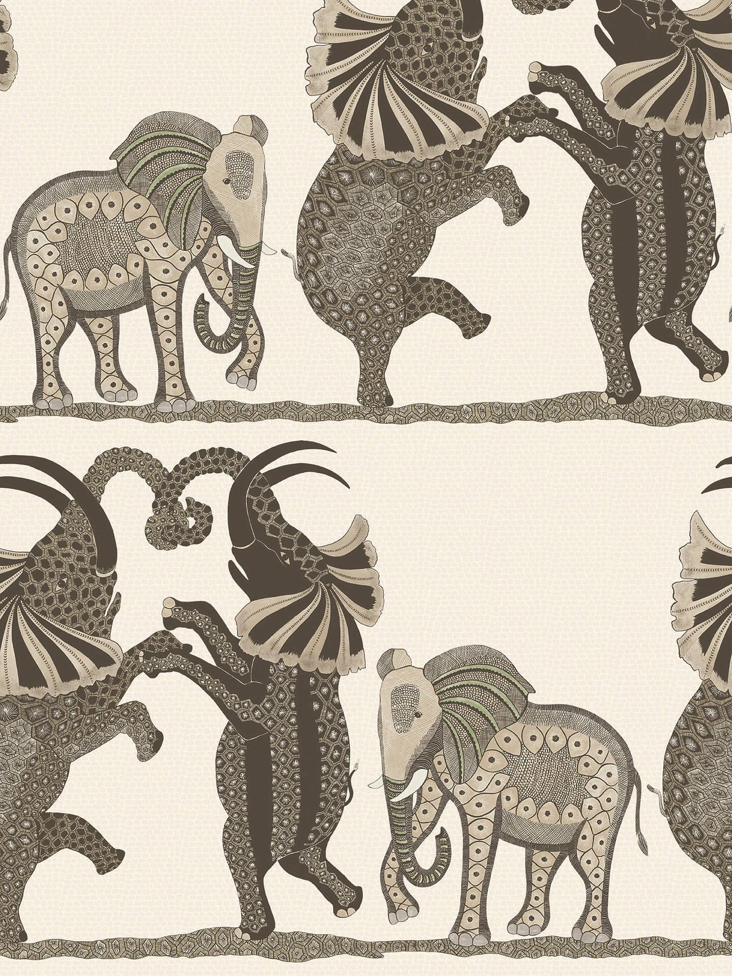 Cole Son Safari Dance Wallpaper 109 8036