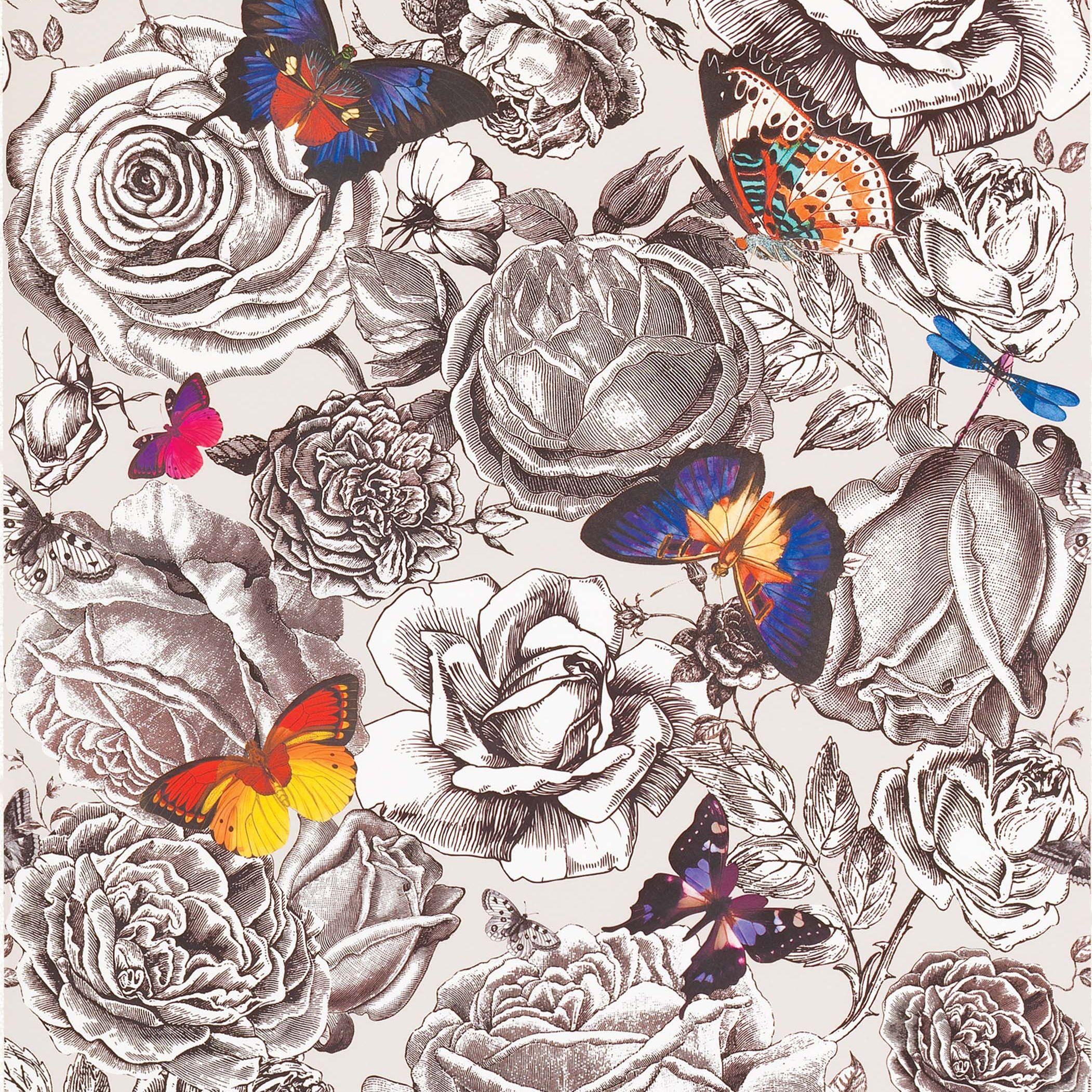 Osborne & Little Osborne & Little Butterfly Garden Wallpaper