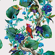 Buy Osborne & Little Rain Forest Wallpaper Online at johnlewis.com
