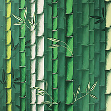 Buy Osborne & Little Bamboo Wallpaper Online at johnlewis.com