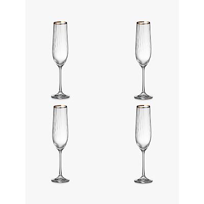 Croft Collection Oakham Platinum Band Champagne Flute, Set Of 4