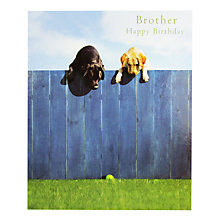 Buy Woodmansterne Labradors Brother Birthday Card Online at johnlewis.com