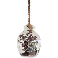 Buy Garden Trading Hanging Terrarium / Pot Online at johnlewis.com