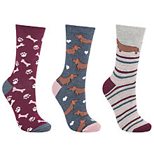 Buy John Lewis Sausage Dog and Bone Print Ankle Socks, Pack of 3, Multi Online at johnlewis.com