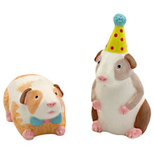 Buy Cath Kidston Pets Party Guinea Pigs Salt and Pepper Shakers Online at johnlewis.com