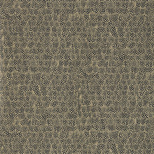 Buy Zoffany Guinea Wallpaper Online at johnlewis.com