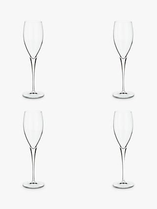 John Lewis & Partners Michelangelo Champagne Flute, Set of 4, Clear, 220ml