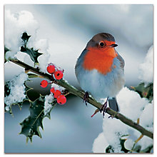 Buy Darkroom Berry Robins Christmas Cards, Pack of 16 Online at johnlewis.com
