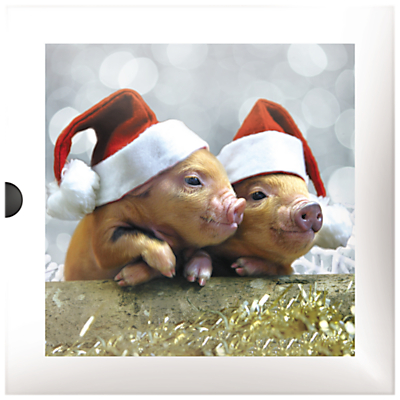 Darkroom Piglets and Lambs Christmas Cards, Pack of 16