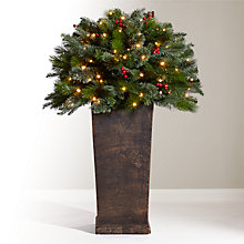 Buy John Lewis Balmoral Pre-Lit Potted Berry Bush, 3ft Online at johnlewis.com