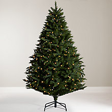 Buy John Lewis Maharaja Pre-Lit Peardrop Christmas Tree, 7ft Online at johnlewis.com